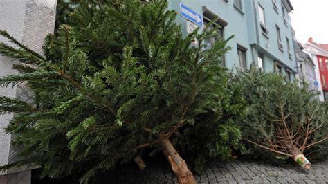wann die bsr ihren weihnachtsbaum abholt berlin