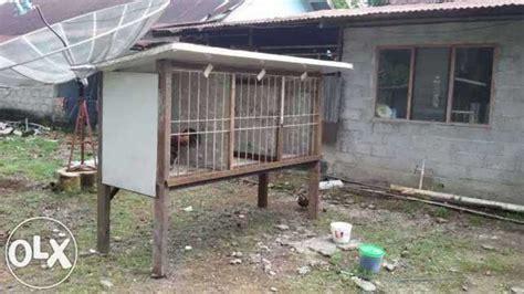desain gambar ayam gambar desain gambar kandang ayam bangkok gaweanomah jago