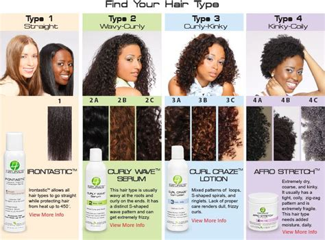 Different Types Of Hair Salons by Best 25 Hair Type Chart Ideas On Hair