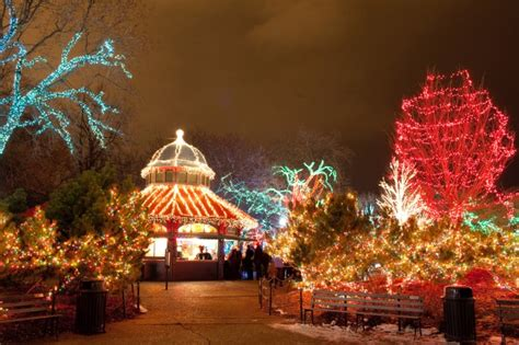 lincoln park zoo lights broughton hotels of chicago