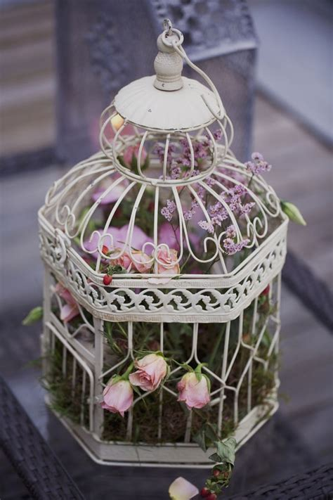 Decorating A Birdcage For A Home by Using Bird Cages For Decor 46 Beautiful Ideas Digsdigs