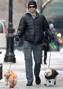 allegra for dogs hugh jackman keeps his dogs dali and allegra warm in booties and coats daily
