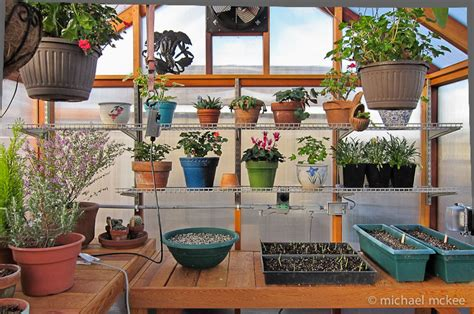 inside greenhouse ideas planning your greenhouse interior interior design