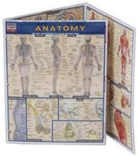 The Joy Of Home Home Science Tools Amp Human Anatomy