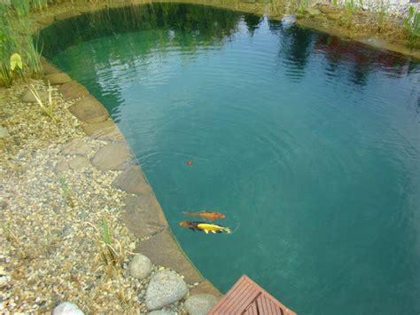 Schwimmteich Mit Fischen by Schwimmteich