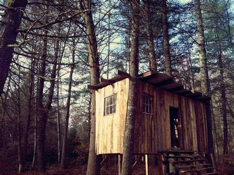 Small Home In The Woods Tiny Houses Small Spaces Tiny House In The Woods Home