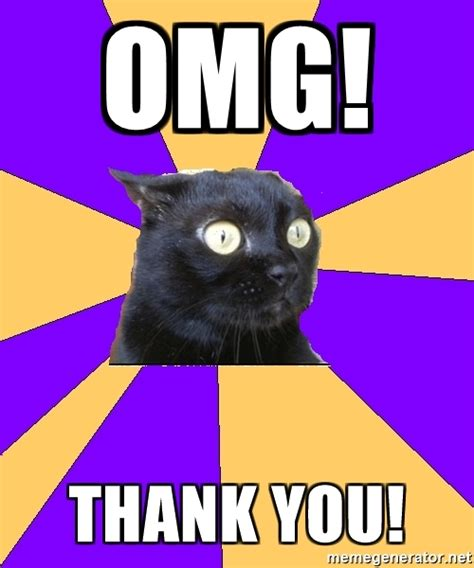 Thank You Cat Meme - omg thank you anxiety cat meme generator
