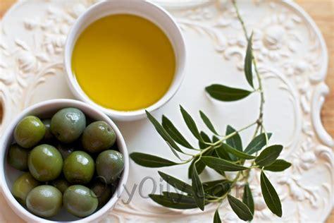 6 substitutes for olive oil oilypedia com