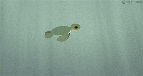 tartarughe marine alimentazione la tartaruga marina il vero amico dell uomo