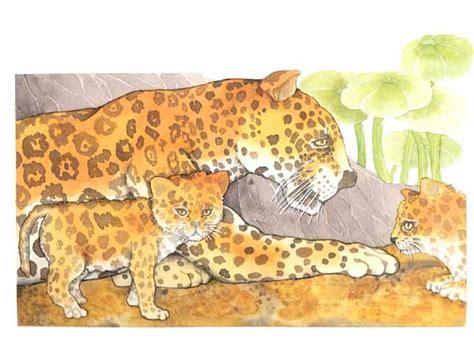 imagenes del jaguar con sus crias el jaguar