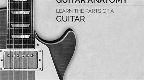parts of a guitar learn the guitar s anatomy guitar
