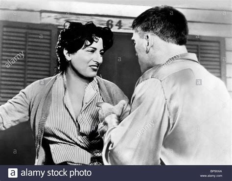 the rose tattoo 1955 the 1955 burt lancaster stock photos the