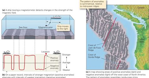 Used As Evidence For Sea Floor Spreading by Evidence For Sea Floor Spreading Learning Geology