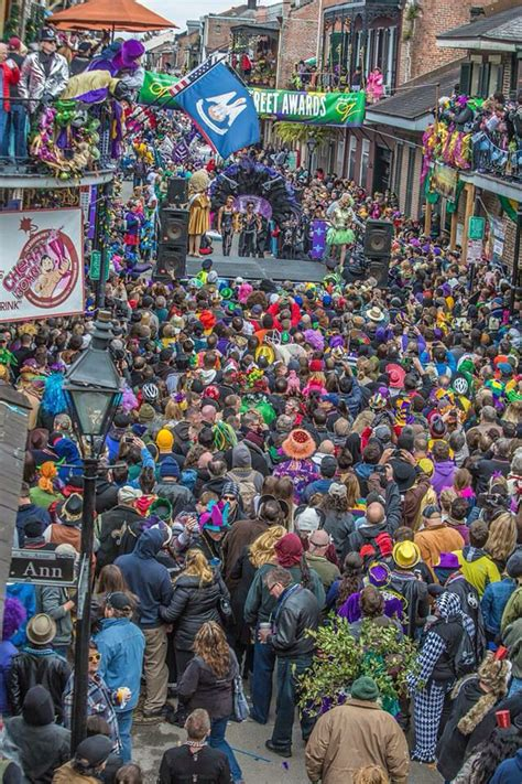 ktvu new year parade contest 211 best new orleans mardi gras images on
