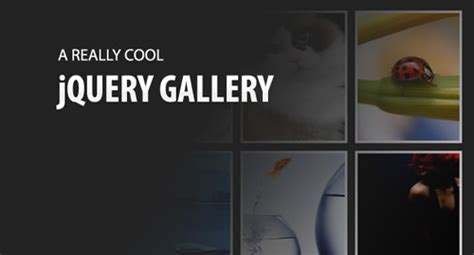tutorial jquery image gallery hot jquery slideshow image gallery tutorials and downloads
