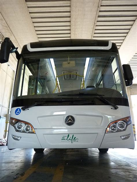 rama mobilita lunghi autobus quot green quot circoleranno in maremma veicoli