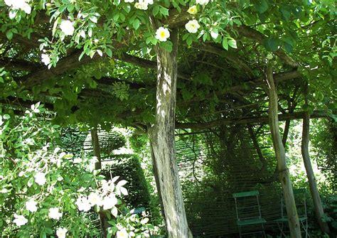 Sitzplatz Im Garten Anlegen by Sitzplatz Anlegen
