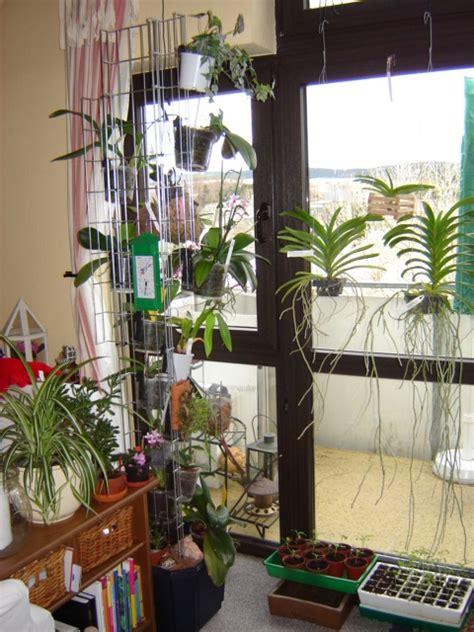Orchideen Gestell by Orchideen Rettung Haus Garten Forum Chefkoch De