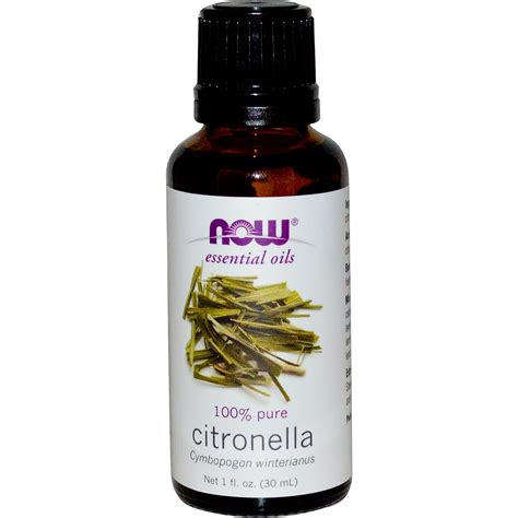 now foods essential oils citronella 1 fl oz 30 ml iherb com