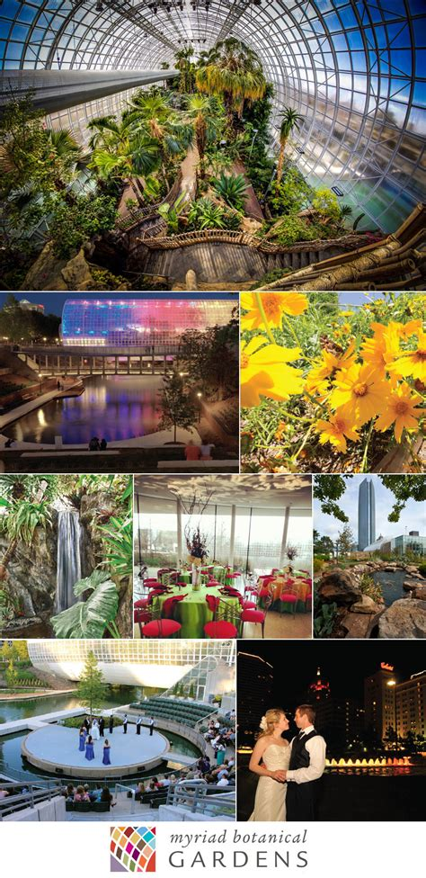 Myriad Botanical Garden Luxe Location Myriad Botanical Gardens
