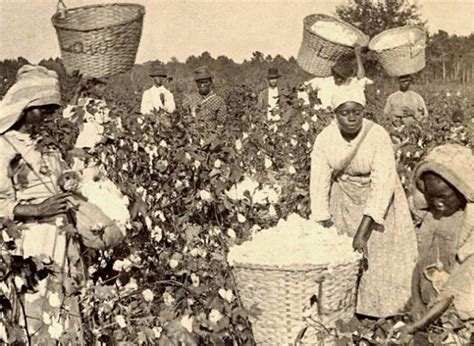 top 6 countries that grew filthy rich from enslaving black