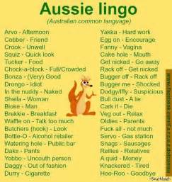 lingo discover your ideal customer s secret language and make your business irresistible books best 25 australian sayings ideas on