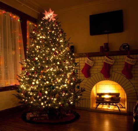 pretty christmas trees victoria b