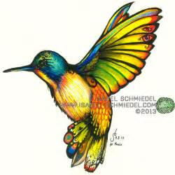 colorful drawings color humming bird by schmiedel on deviantart