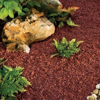 using cedar mulch in vegetable garden 1000 images about mulch landscape rock wood on