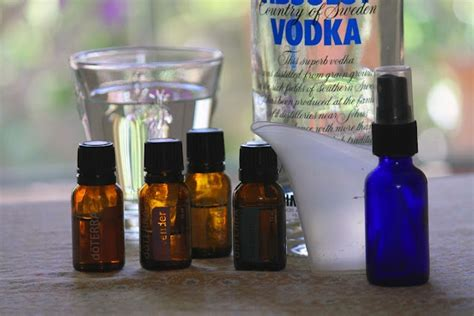 essential oils bed bugs homemade vodka bed bug repellent spray great ideas