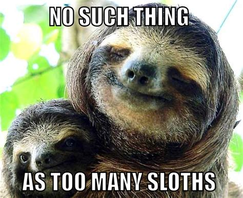 sloth memes sloth memes sloth meme sloth