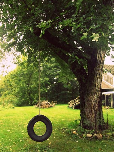 tree with tire swing 26 playful tire swings that you can build yourself