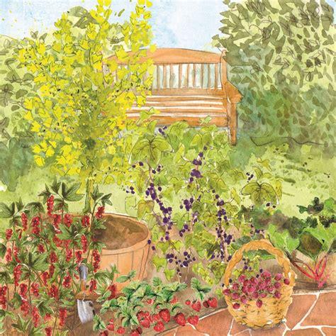 fruit garden compact fruit garden rocket gardens