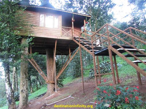 treehouse kerala tree house munnar kerala our experience destination