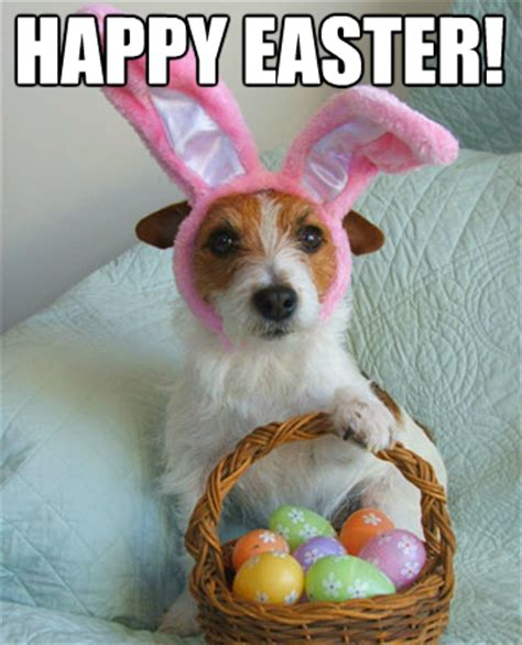 happy easter from petcarerx