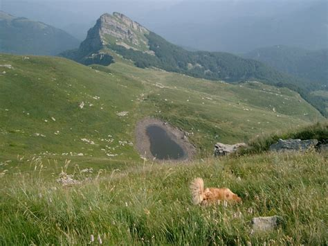www monte parma nuova pagina 1