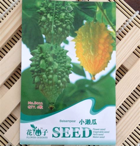 2 vegetables that can be eaten small wrasse melon seeds jin lingzi fruit and vegetable