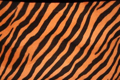 pattern tiger photoshop free fur textures for photoshop psddude
