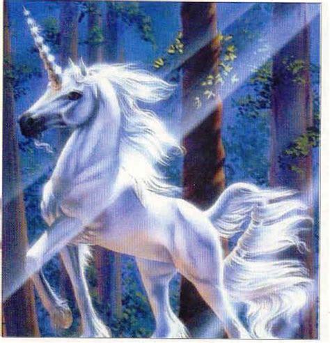 imagenes artisticas con significado ranking de animales y seres mitol 243 gicos parte i listas