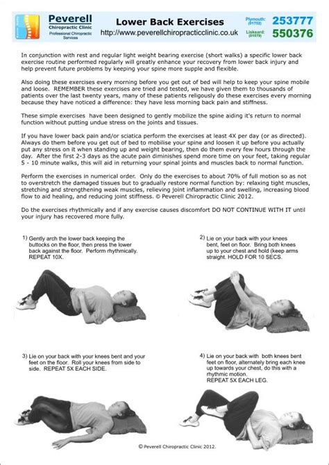 lower back pain in bed free lower back pain and sciatica exercises for download