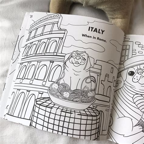 doug the pug coloring book doug the pug on quot the coloring book u been waiting for pre order the