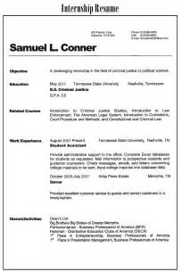 types of resumes samples 3
