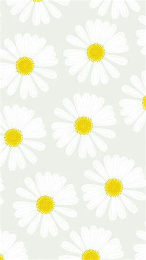 daisy wallpaper pinterest daisy wallpaper cute cocoppa wallpaper pinterest