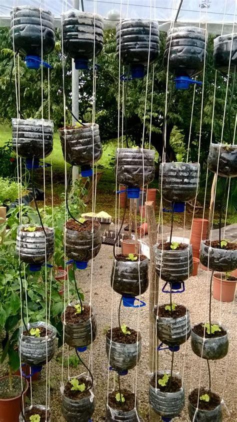 Water Bottle Vertical Garden Hydroponics Costa Rica