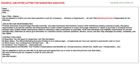 appointment letter format marketing executive marketing executive offer letter cv14028