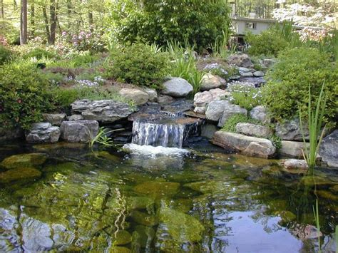 diy backyard ponds and waterfalls 1000 ideas about pond waterfall on pinterest diy