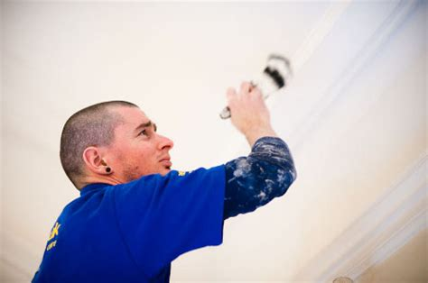 painter and decorator painter decorator services in