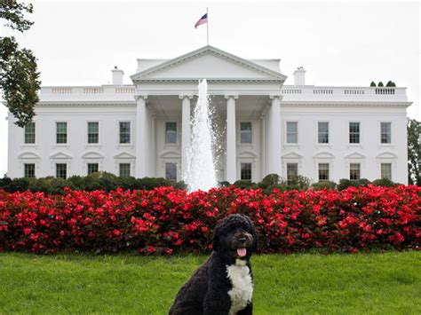 facts about the white house geek treks 7 facts about the white house that will make you gasp