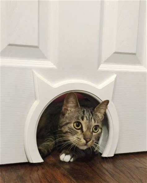 Interior Cat Door With Flap 10 Truly Amazing Cat Doors And Entryways Petslady