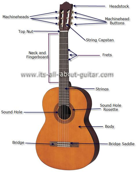 diagram of a string guitar